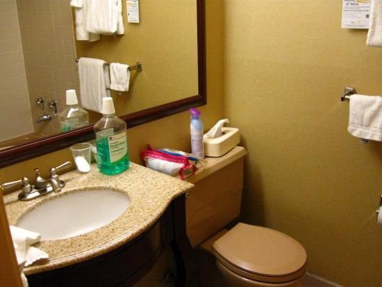 Clarion Hotel and Conference Center : Cute bathroom but water problems