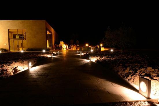 Tenuta del Fontino Family-Farm Hotel: La cantina della Tenuta , un paradiso e grandi vini !