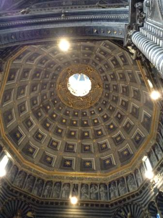 Siena, Italia: The ceiling rivals that of the Pantheon