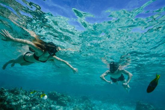 Sea Change Villas: Great snorkeling!