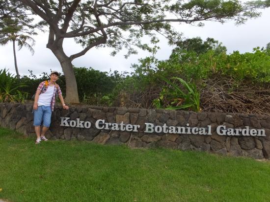 Beauty Flowers Picture Of Koko Crater Botanical Garden Honolulu Tripadvisor