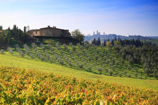 Agriturismo Montegonfoli: Montegonfoli and San Gimignano's Towers