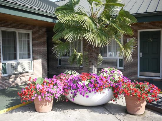 Eugene, Oregón: The owners personally care for the gardens and grounds.