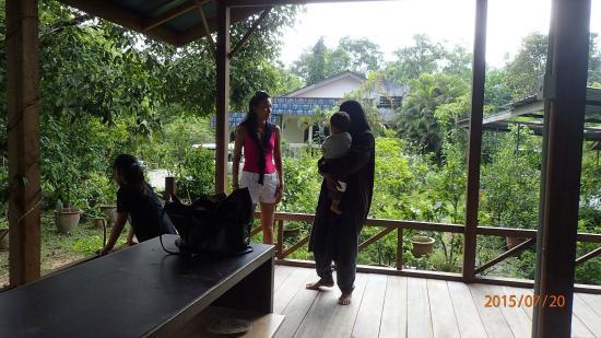 Herbwalk in Langkawi Photo