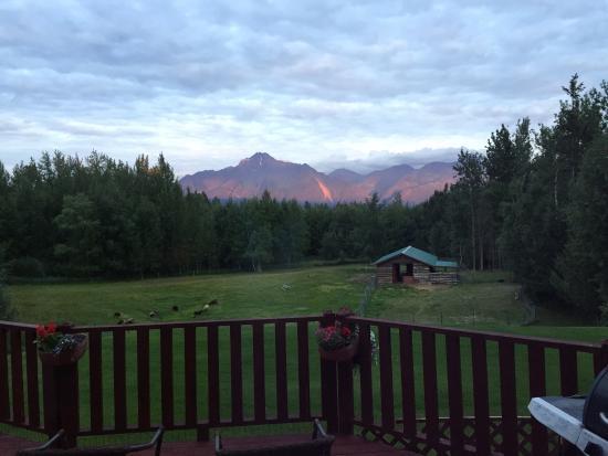 Alaska's Harvest B&B