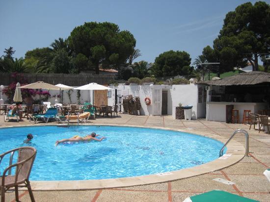 La piscina rotonda e zona bar picture of hotel pinos for Piscina rotonda