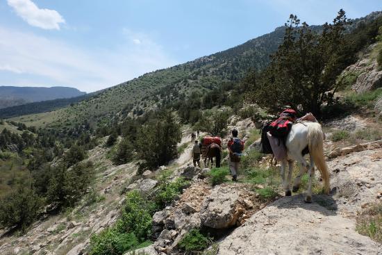 Golestan National Park: Golestan Nationalpark: Trekking mit Lastpferden