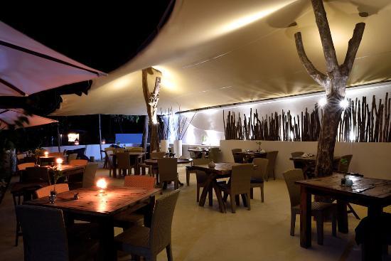 Indigo Beach Zanzibar Restaurant bedouin tent & Restaurant bedouin tent - Picture of Indigo Beach Zanzibar Bwejuu ...