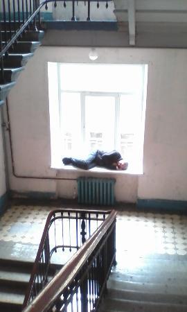 Kapital Hotel na Moskovskom: Обитатели парадной летсницы