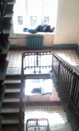 Kapital Hotel na Moskovskom: Обитатели парадной лестницы
