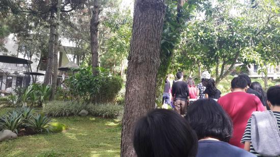 Lembang Asri: Path leading to the hall.