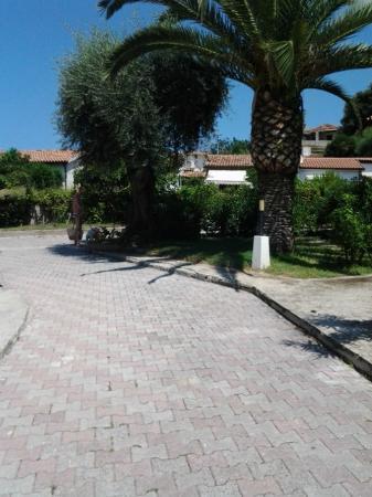 Giardini molto curati foto di albergo residence - Giardini curati ...