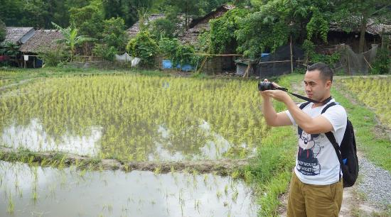 Lanna Boutique Travel: rice field in hill tribe trip