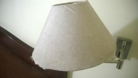 Hotel Preethi Classic Towers: dirt on the lamp