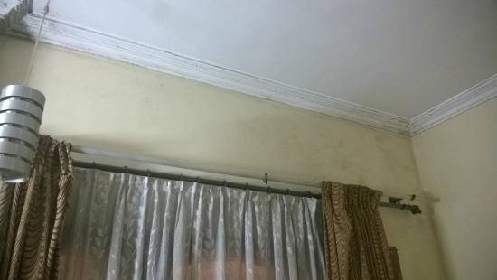 Hotel Preethi Classic Towers: fungus