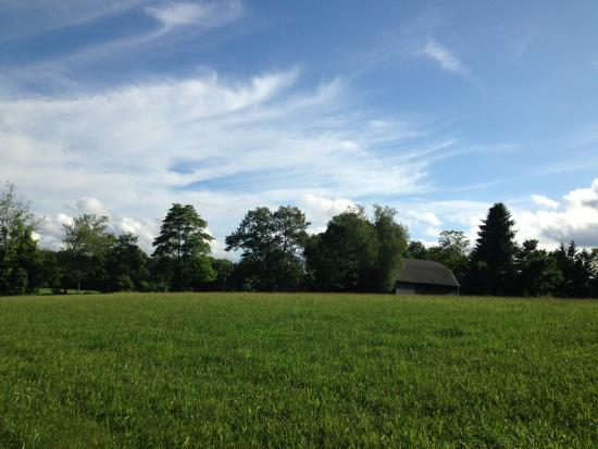 Foster, RI: The beautiful meadow you can sit by