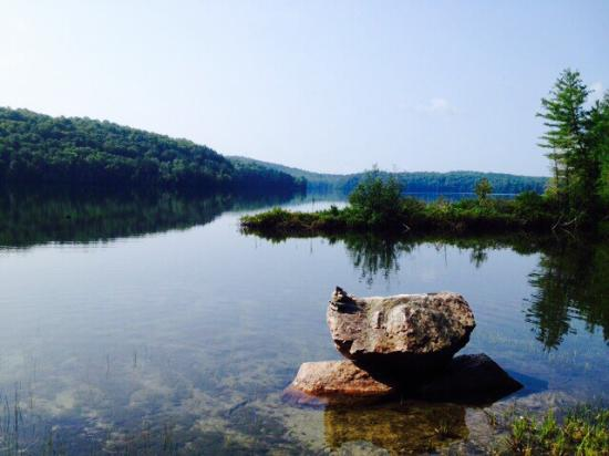 Limberlost Forest and Wildlife Reserve: photo0.jpg