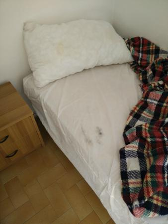 Hostel  Veronique: The bed sheets and pillow were stained yellow and black.