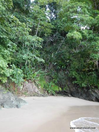 Costa Noreste, Tobago: Pirate's Bay beach, Tobago