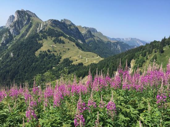 La Tournette: Another amazing view