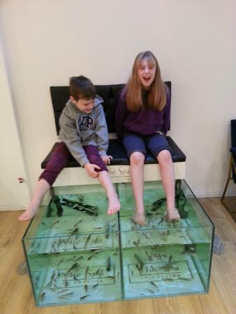 Children enjoying the fish Spa