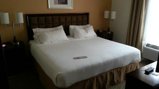 Holiday Inn Express Brooksville West : Bedroom