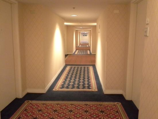 Doubletree Hotel Chicago Oak Brook: Corridor