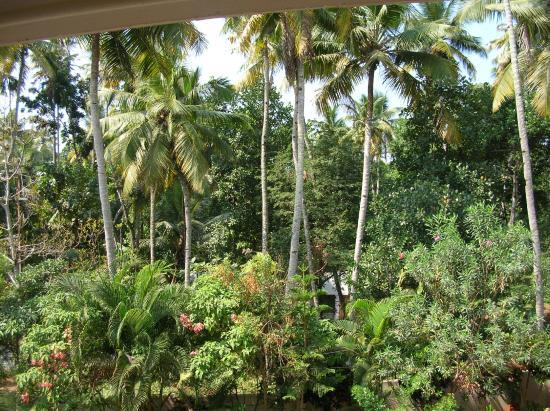 Karthika Plaza Resort: View from Balcony