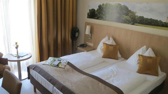 Hotel Babenbergerhof : Interrior of Comfort Double room