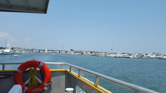 Sightseer Whale and Dolphin Cruises: Leaving the inlet