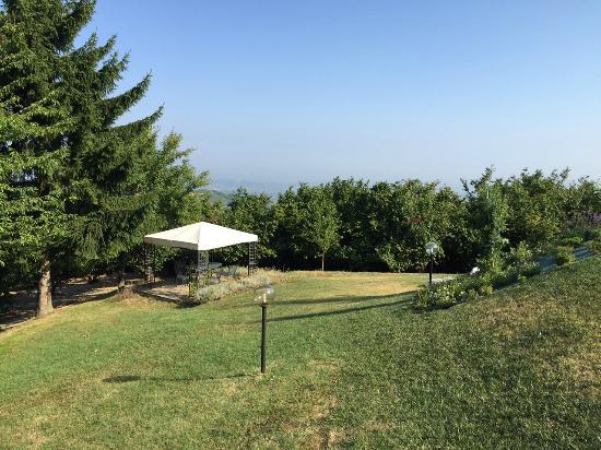 All'Ombra del Pero: Vista sul parco.