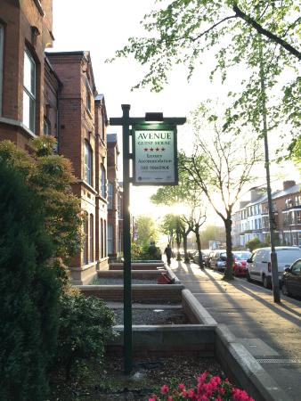 Avenue Guest House: Street View
