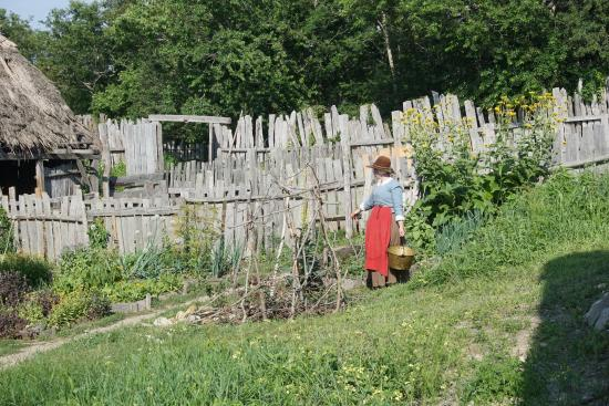 Working The Garden Picture Of Plimoth Plantation