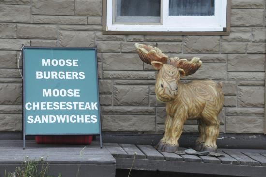 Raleigh, Canadá: Moose meals