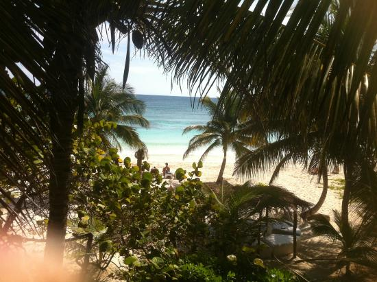 Playa Xcanan Cabanas Tulum: View from the room is perfect cause you can see the ocean and also have privacy