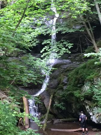 Jones Run Falls Picture Of Doyles River Falls