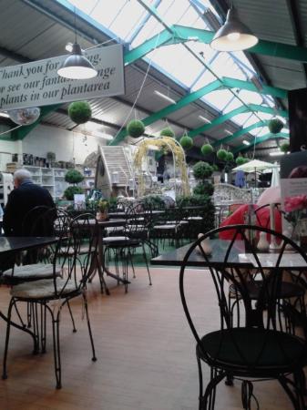 Ackworths Garden Centre