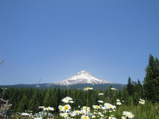 Mt Hood Village RV Resort: Mt. Hood