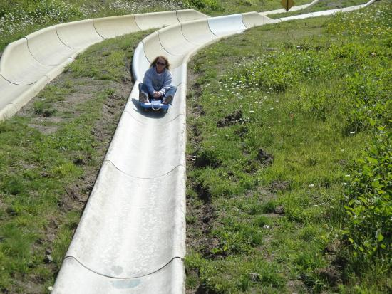Mt Hood Village RV Resort: Nearby bobsled fun at Ski Bowl.