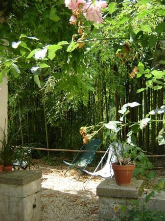 terrasse du studio dans les bambous