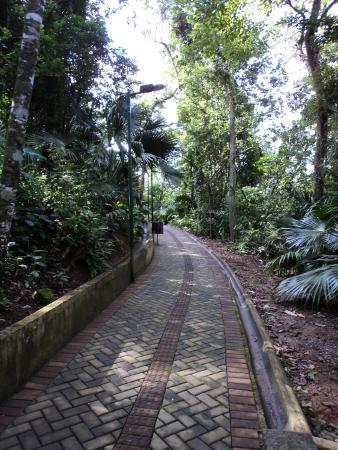 Parque Ecológico Municipal de São Francisco do Sul