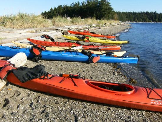 Quadra Island Kayaks - Day Tours: Taking a break on Rebecca Spit