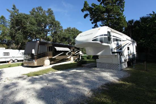 Space Coast RV Resort: RV Site