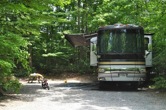 Spring Gulch Resort Campground: RV Site