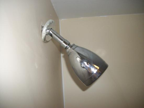 Baymont by Wyndham Camp Lejeune: Shower head was very loose