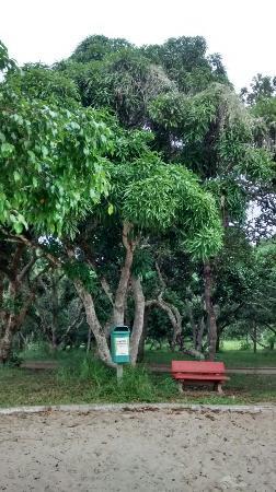 Parque da Cidade Frei José Monteiro Sobrinho
