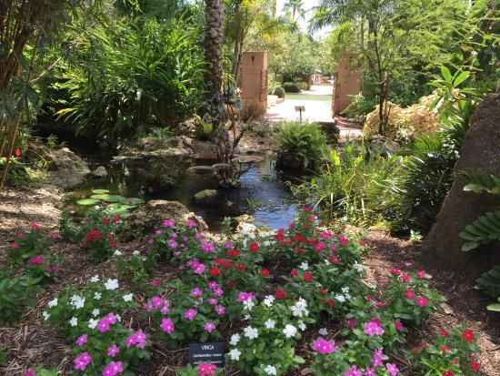 Great Pictures It 39 S So Beautiful Florida Botanical Gardens Largo Tripadvisor