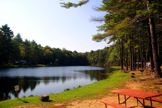 Sturbridge RV Resort: Views