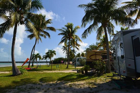 Sunshine Key RV Resort & Marina: Views