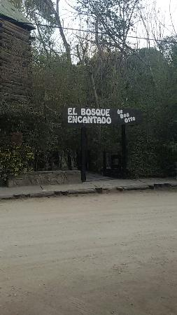 Bosque Encantado de Don Otto